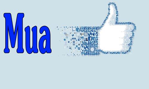 Top 20 dịch vụ tăng like facebook giá rẻ, uy tín nhất 2020 2